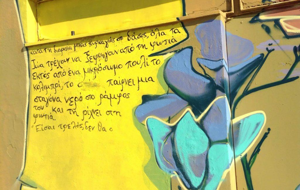 graffiti 41